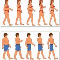 худеем за 25 дней энерджи диет отзывы